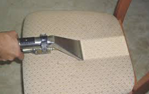 Bell Canyon carpet cleaners offer a variety of cleaning services.